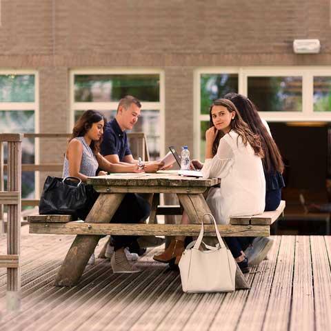 Rotterdamm-Dating-Dienst